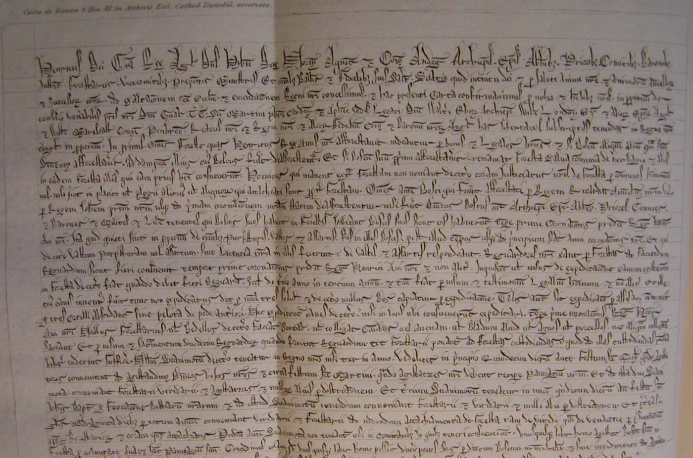 Forests and Chases: Henry III's Charter of the Forest